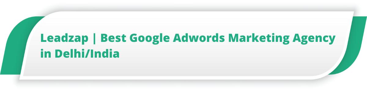 Leadzap | Best Google Adwords Marketing Agency in Delhi/India