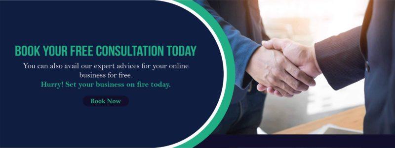Leadzap consultation